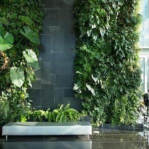 How To Professionally Build A Vertical Garden