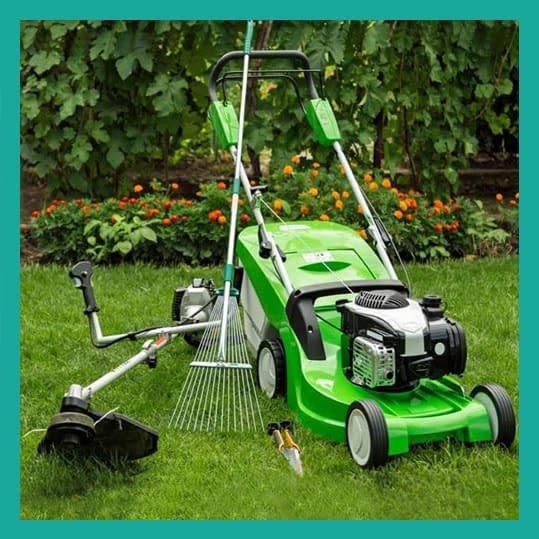 Professional Garden Maintenance Service | Lawn Landscaping In Pakistan